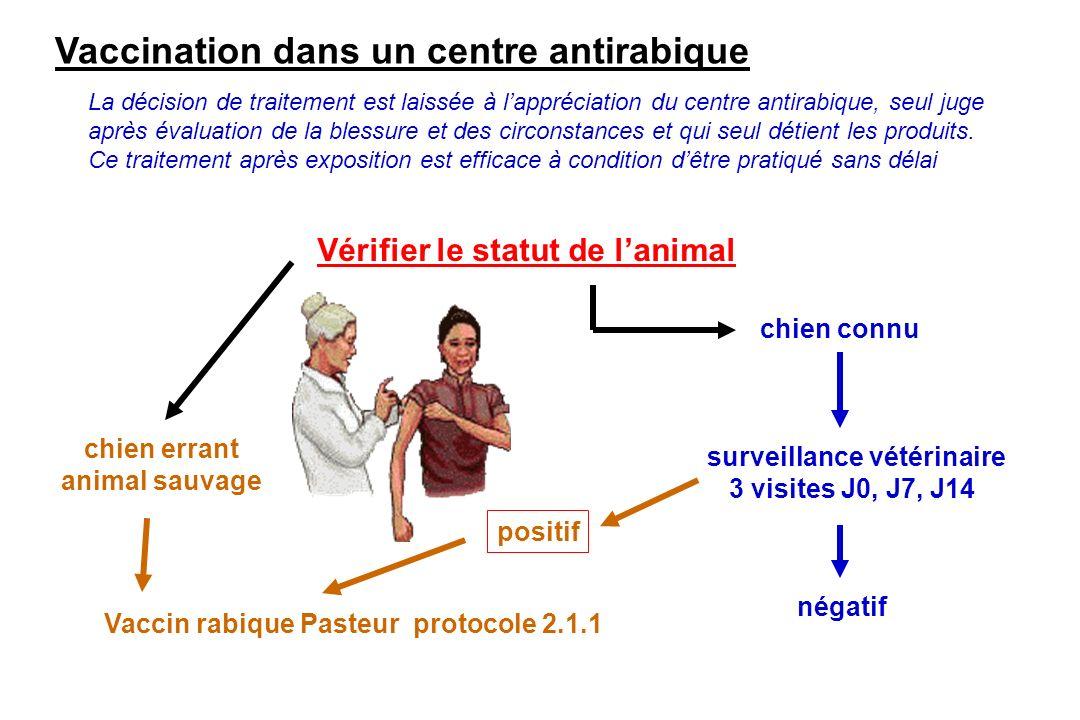 Vaccination dans un centre antirabique Vaccin rabique Pasteur protocole 2.1.1 chien connu chien errant animal sauvage surveillance vétérinaire 3 visit