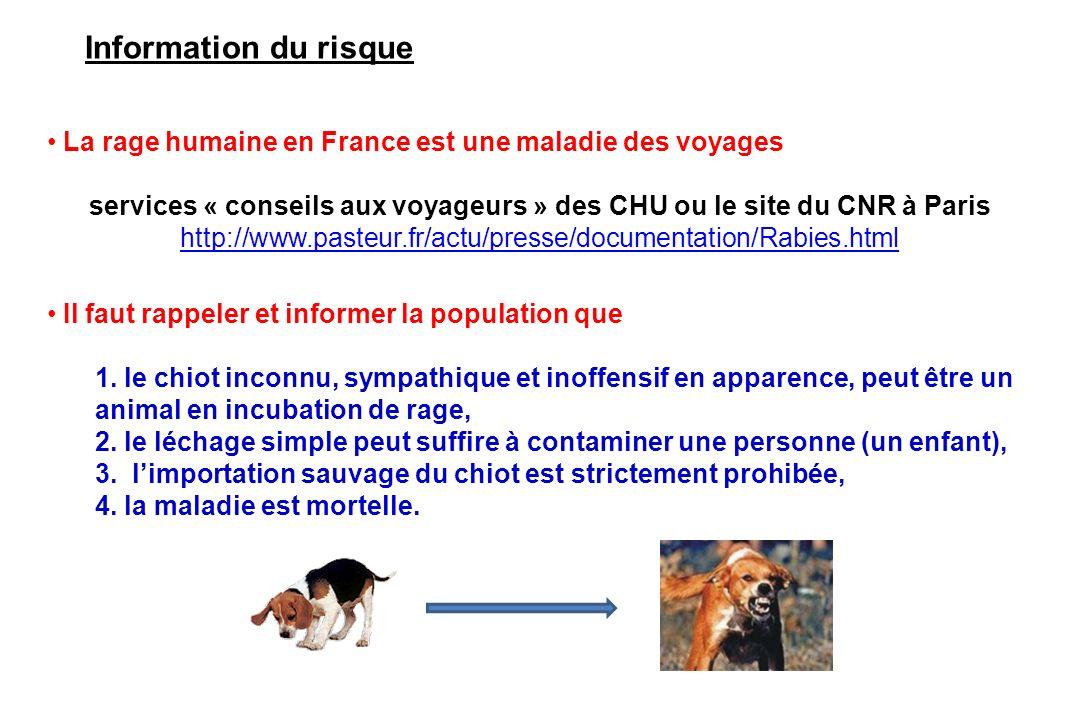 Information du risque La rage humaine en France est une maladie des voyages services « conseils aux voyageurs » des CHU ou le site du CNR à Paris http