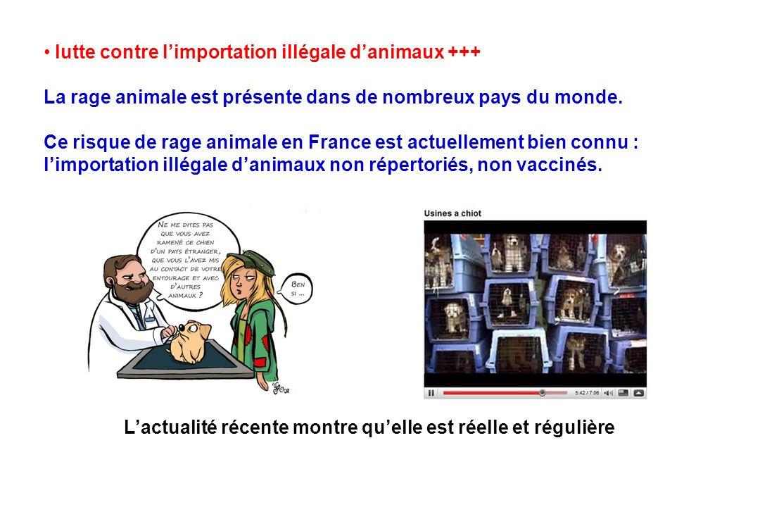 lutte contre limportation illégale danimaux +++ La rage animale est présente dans de nombreux pays du monde. Ce risque de rage animale en France est a