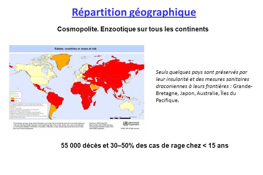 55 000 décès et 30–50% des cas de rage chez < 15 ans Répartition géographique Cosmopolite. Enzootique sur tous les continents Seuls quelques pays sont