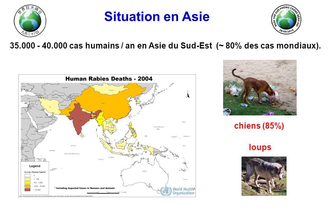 Situation en Asie 35.000 - 40.000 cas humains / an en Asie du Sud-Est (~ 80% des cas mondiaux). chiens (85%) loups