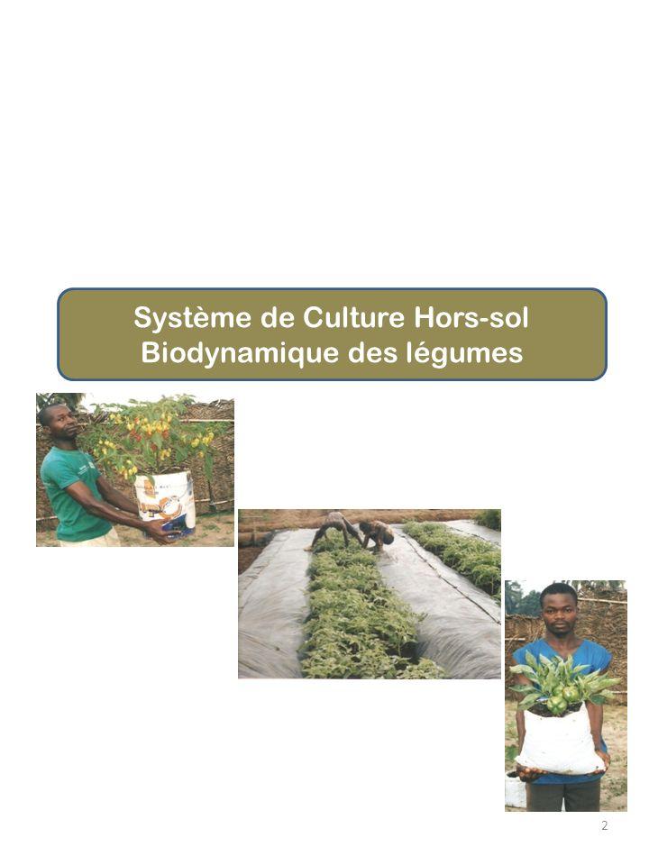 2 Système de Culture Hors-sol Biodynamique des légumes