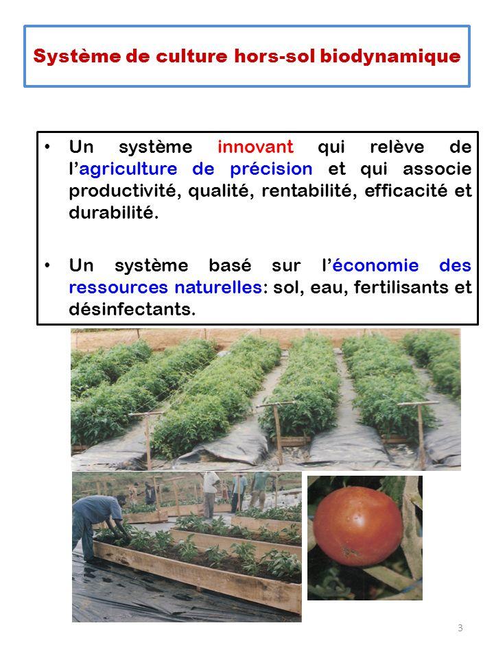 Système de culture hors-sol biodynamique Un système innovant qui relève de lagriculture de précision et qui associe productivité, qualité, rentabilité
