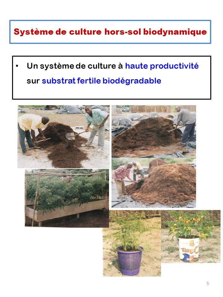 Un système de culture à haute productivité sur substrat fertile biodégradable 5 Système de culture hors-sol biodynamique