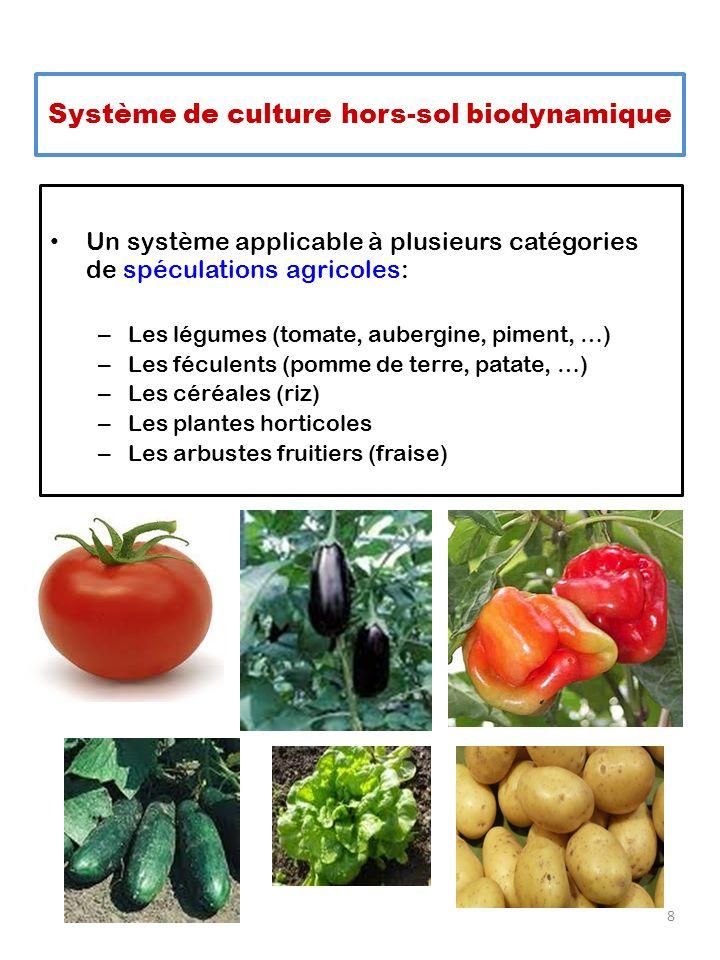 Un système applicable à plusieurs catégories de spéculations agricoles: – Les légumes (tomate, aubergine, piment, …) – Les féculents (pomme de terre,