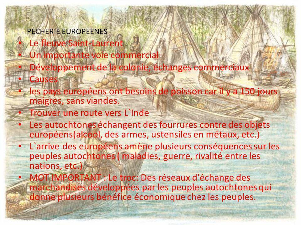 PECHERIE EUROPEENES Le fleuve Saint-Laurent Un importante voie commercial Développement de la colonie, échanges commerciaux Causes les pays européens