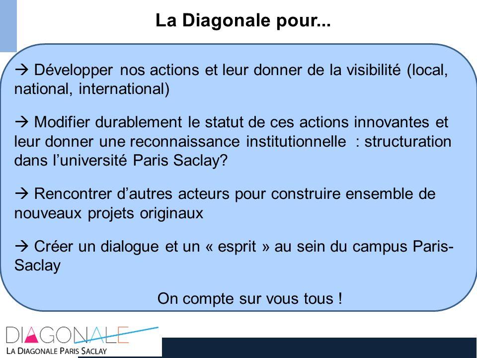 La Diagonale pour... Développer nos actions et leur donner de la visibilité (local, national, international) Modifier durablement le statut de ces act