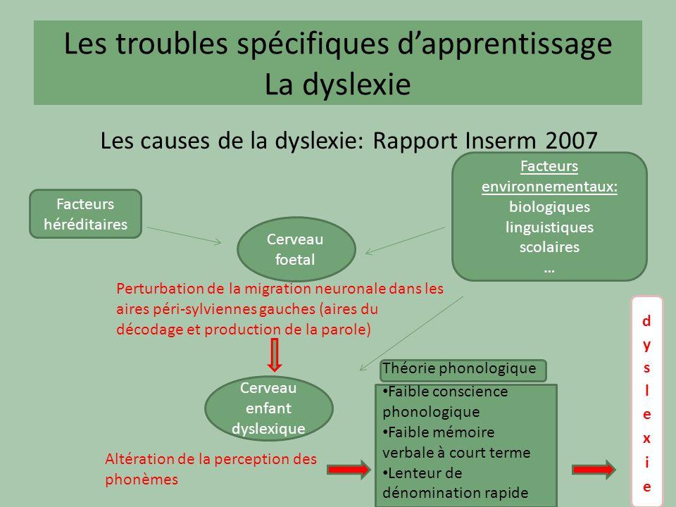 Les troubles spécifiques dapprentissage La dyslexie Les causes de la dyslexie: Rapport Inserm 2007 Facteurs héréditaires Facteurs environnementaux: bi