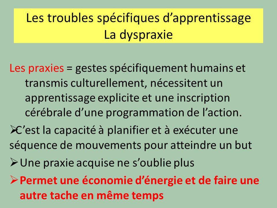 Les praxies = gestes spécifiquement humains et transmis culturellement, nécessitent un apprentissage explicite et une inscription cérébrale dune progr