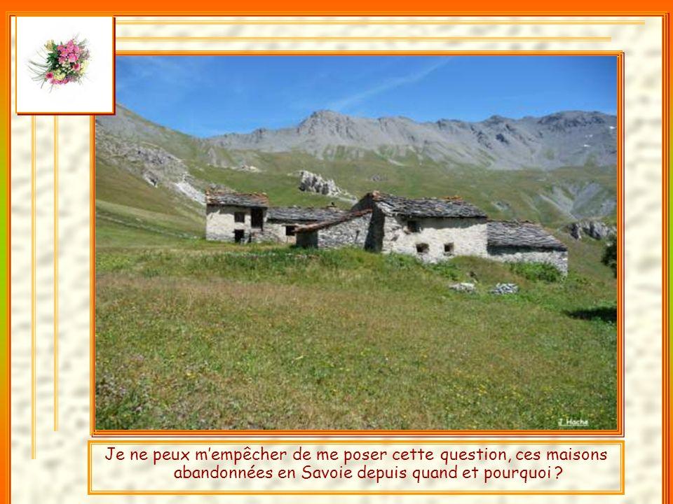 Je suis un randonneur, je ne fais que passer dans ce hameau de Savoie et je suis désolé de constater ce désastre.