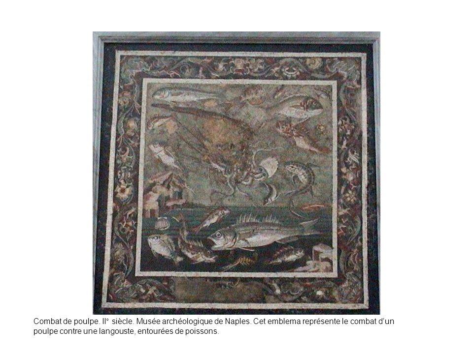 Combat de poulpe. II° siècle. Musée archéologique de Naples. Cet emblema représente le combat dun poulpe contre une langouste, entourées de poissons.