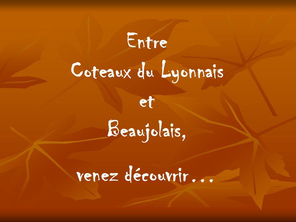 Entre Coteaux du Lyonnais et Beaujolais, venez découvrir…