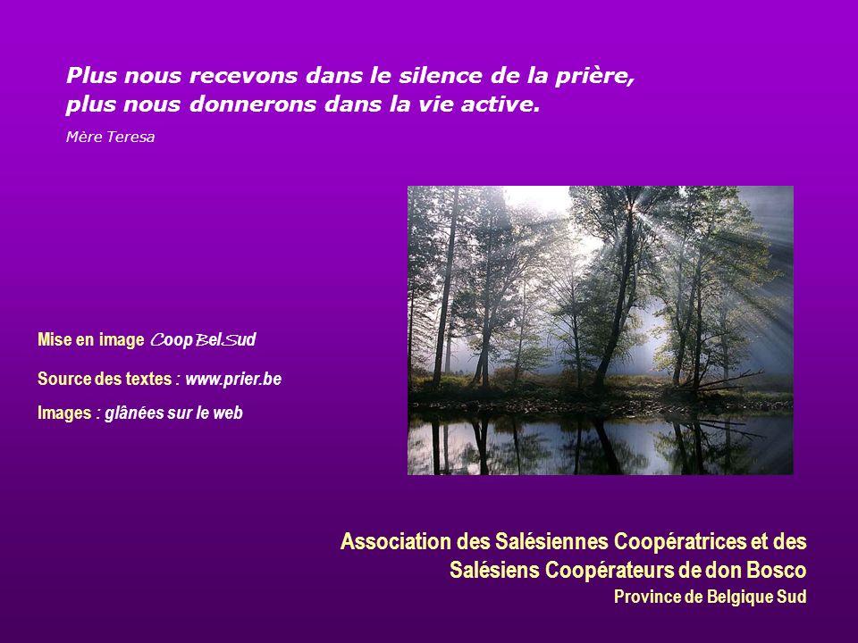 Association des Salésiennes Coopératrices et des Salésiens Coopérateurs de don Bosco Province de Belgique Sud Mise en image C oop B el S ud Source des