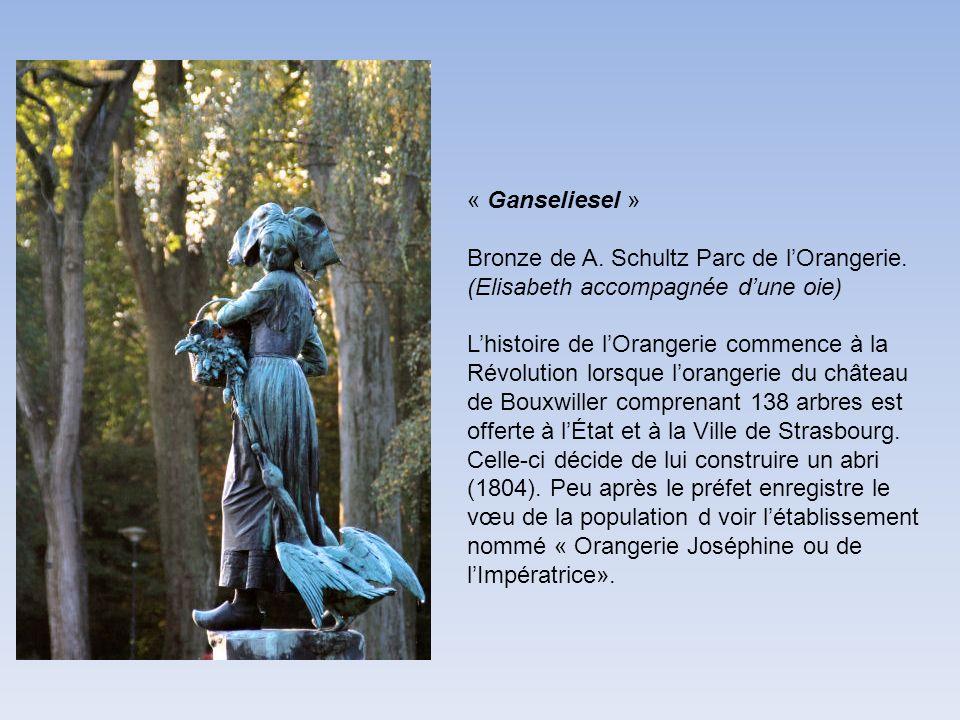 « Ganseliesel » Bronze de A. Schultz Parc de lOrangerie. (Elisabeth accompagnée dune oie) Lhistoire de lOrangerie commence à la Révolution lorsque lor