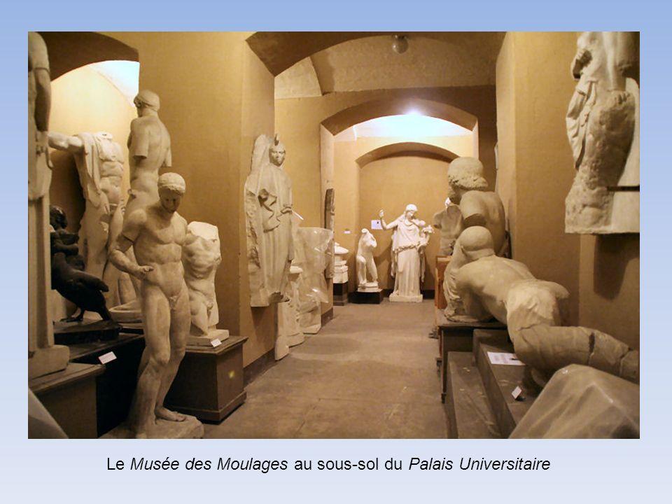 Le Musée des Moulages au sous-sol du Palais Universitaire
