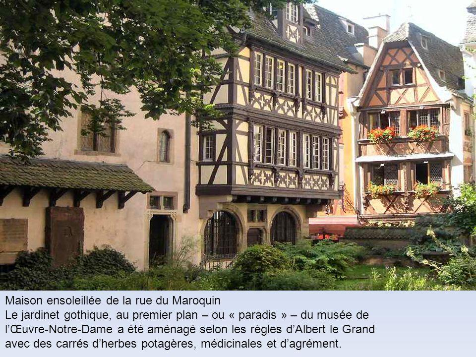 Maison ensoleillée de la rue du Maroquin Le jardinet gothique, au premier plan – ou « paradis » – du musée de lŒuvre-Notre-Dame a été aménagé selon le