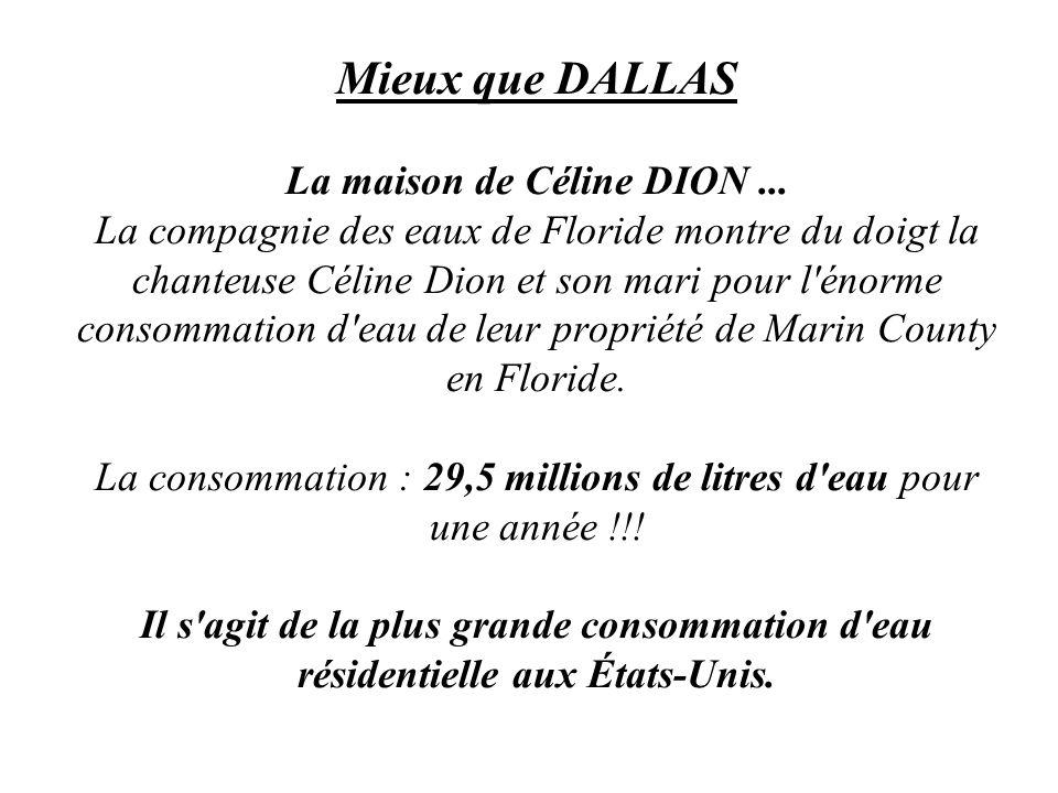 Mieux que DALLAS La maison de Céline DION... La compagnie des eaux de Floride montre du doigt la chanteuse Céline Dion et son mari pour l'énorme conso