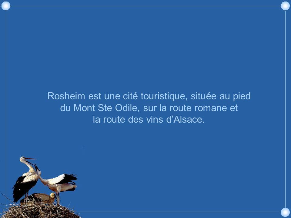 Rosheim est une cité touristique, située au pied du Mont Ste Odile, sur la route romane et la route des vins dAlsace.