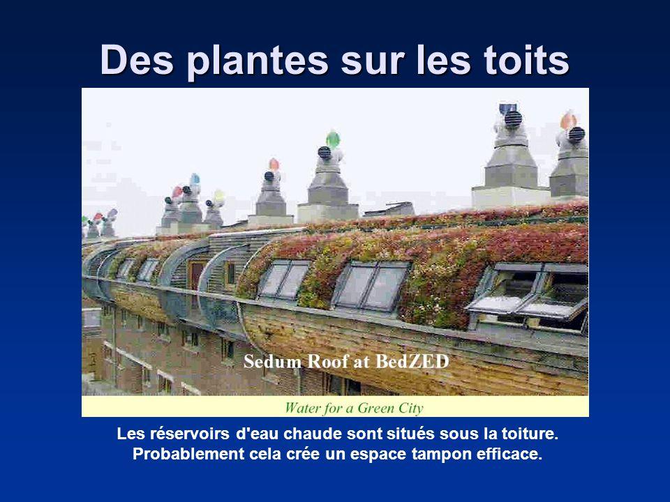 Des plantes sur les toits Les réservoirs d'eau chaude sont situés sous la toiture. Probablement cela crée un espace tampon efficace.