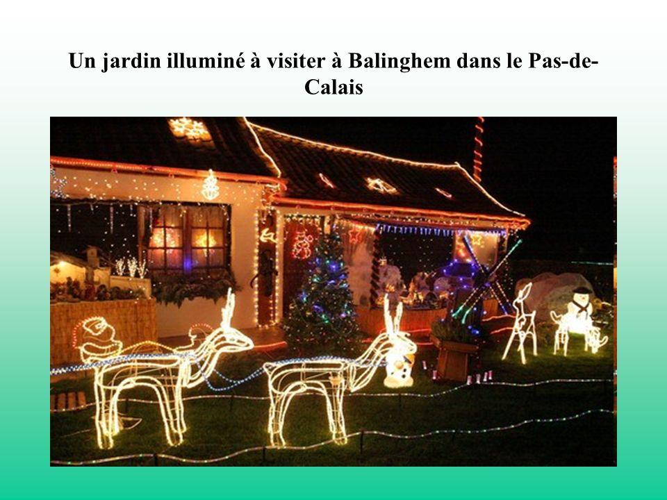 Un jardin illuminé à visiter à Balinghem dans le Pas-de- Calais