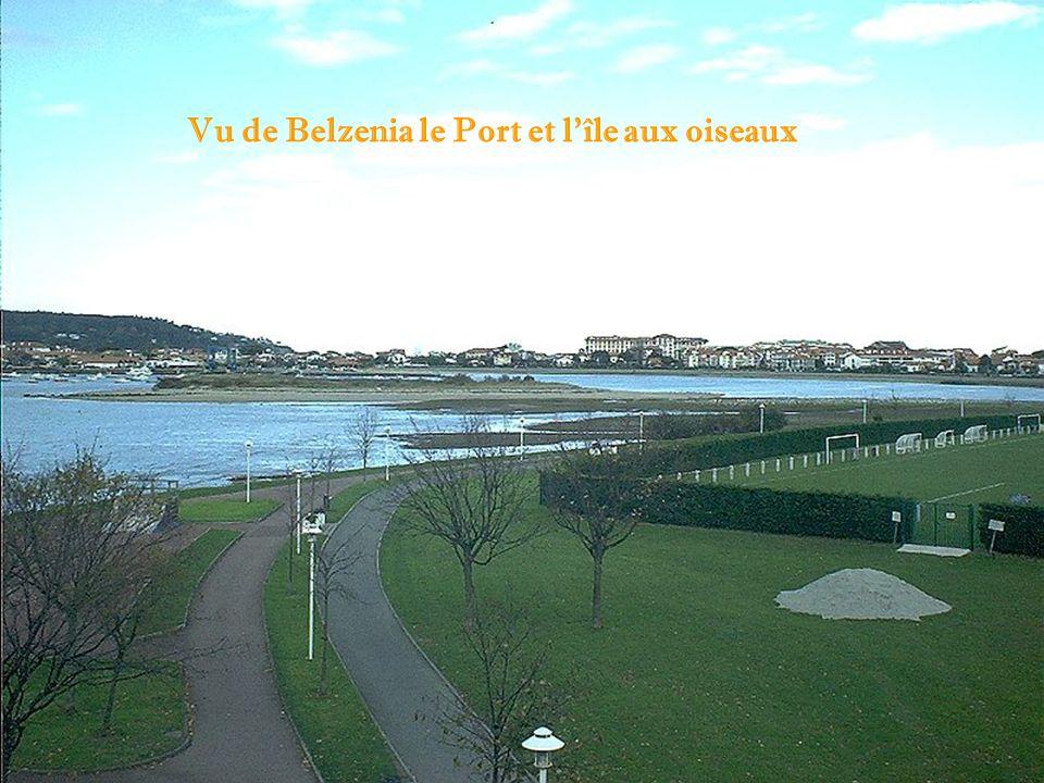 Vu de Belzenia le Port et lîle aux oiseaux