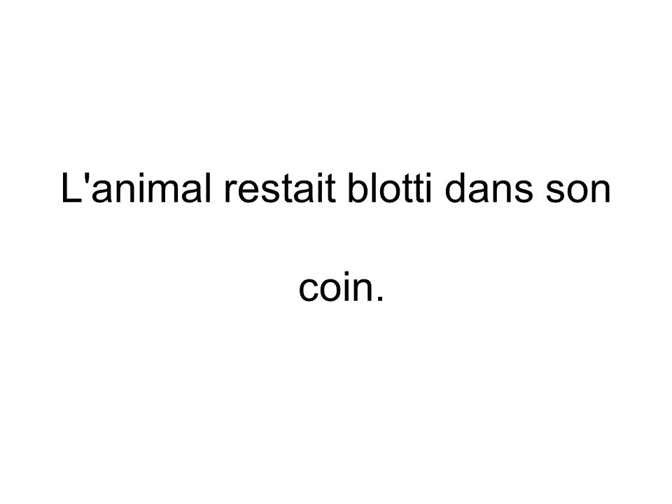 L'animal restait blotti dans son coin. N N Adjectif