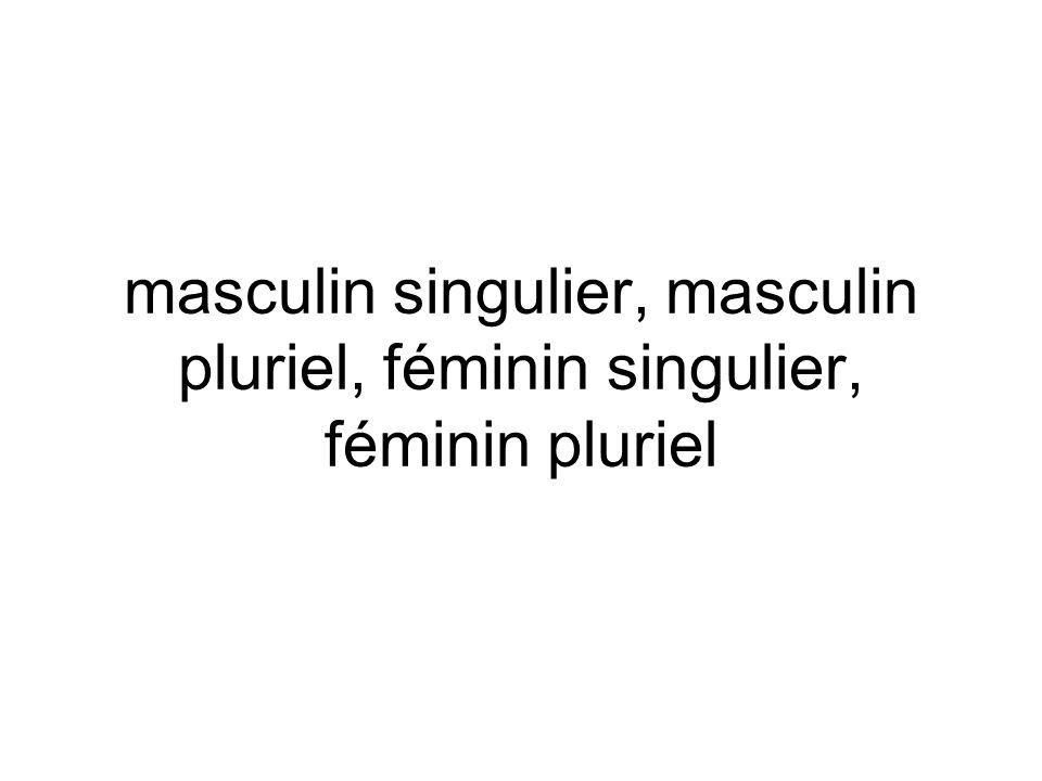 masculin singulier, masculin pluriel, féminin singulier, féminin pluriel