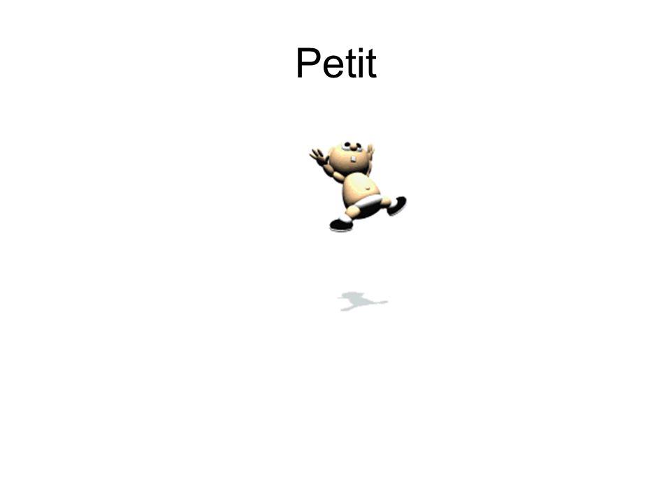 Petit