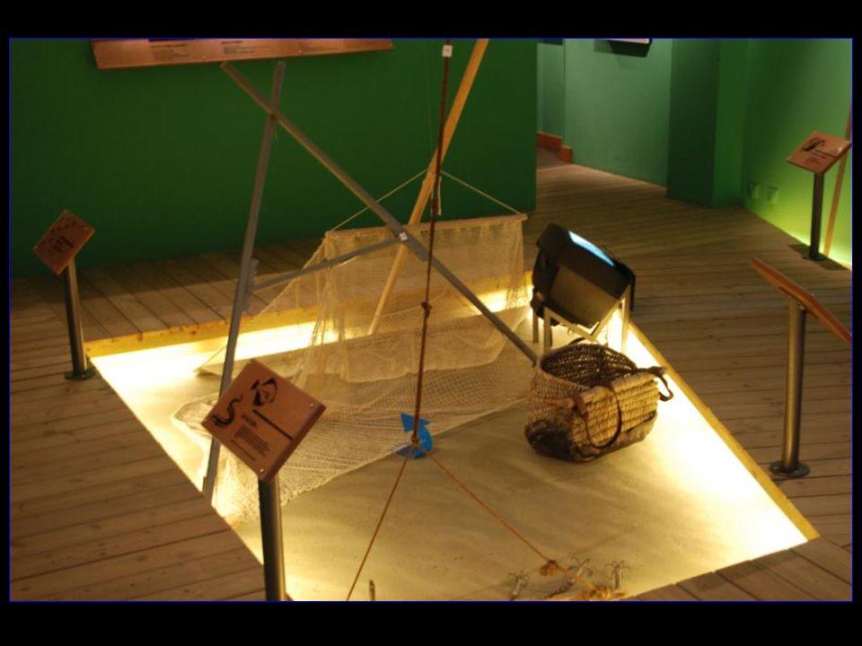 Lespace met en valeur deux activités, La pêche à pied et ses techniques (pêche à la crevette avec une bichette) et la fabrication du sel ignifère disparue en milieu du XIX me siècle