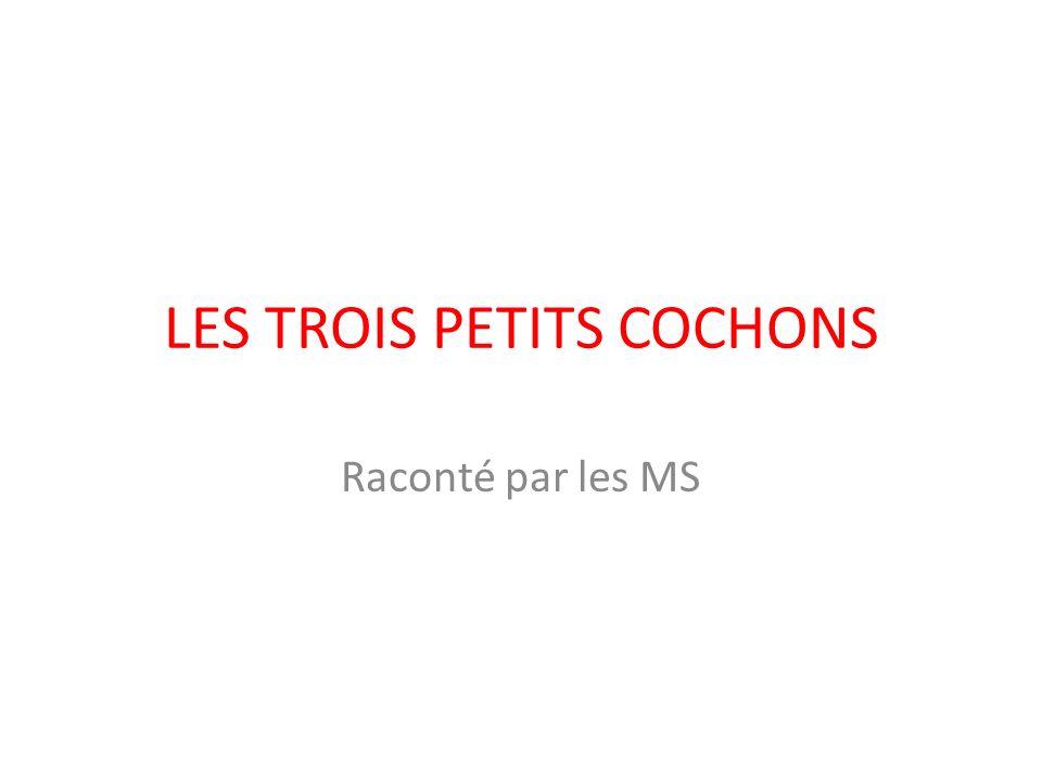 LES TROIS PETITS COCHONS Raconté par les MS