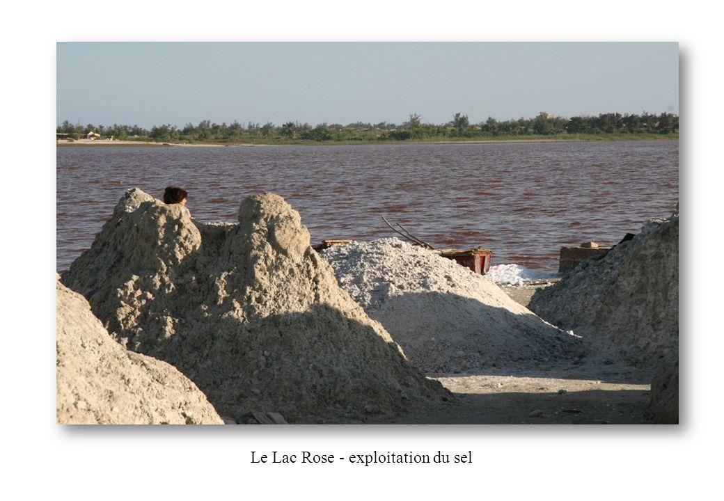 Le Lac Rose - exploitation du sel