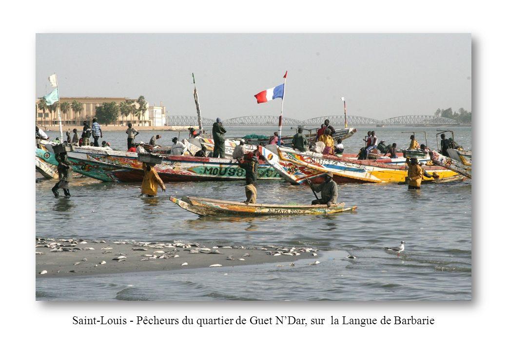 Saint-Louis - Pêcheurs du quartier de Guet NDar, sur la Langue de Barbarie