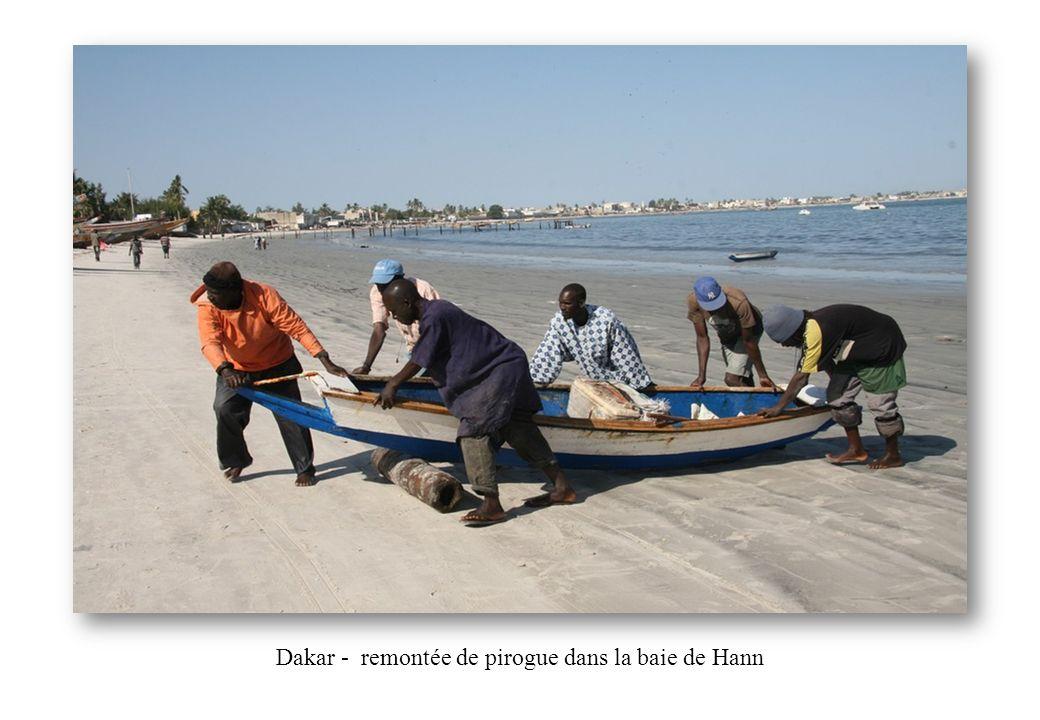 Dakar - remontée de pirogue dans la baie de Hann