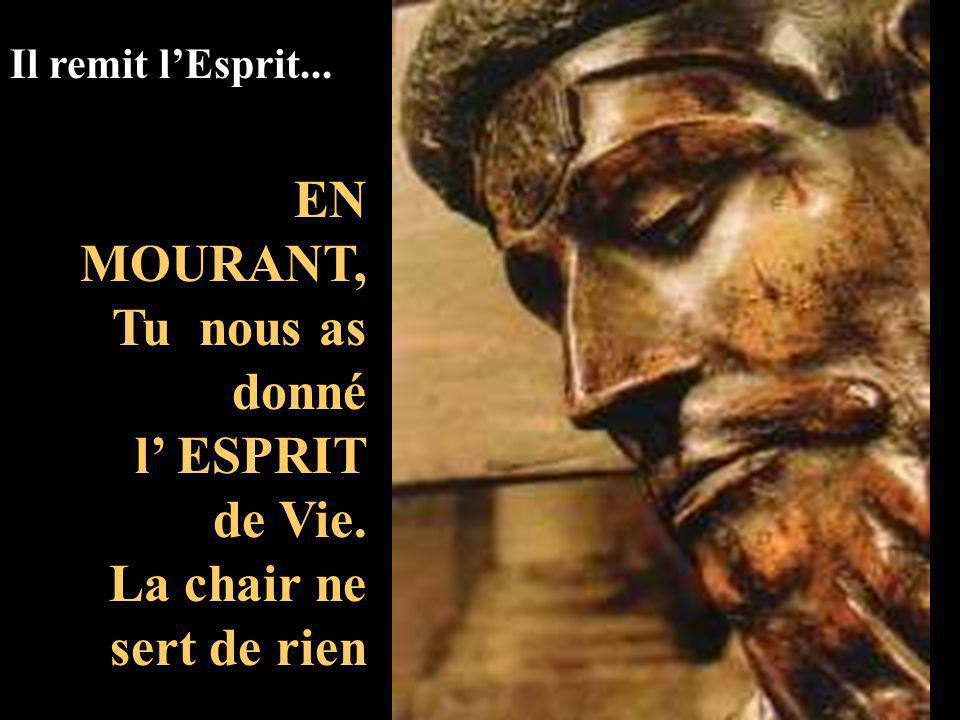Jai soif SI NOUS SAVIONS QUI NOUS DIT : DONNE-MOI à BOIRE... Nous nous rendrions compte que cest Lui qui a soif de NOUS