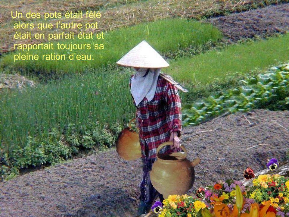 Un des pots était fêlé alors que lautre pot était en parfait état et rapportait toujours sa pleine ration deau.