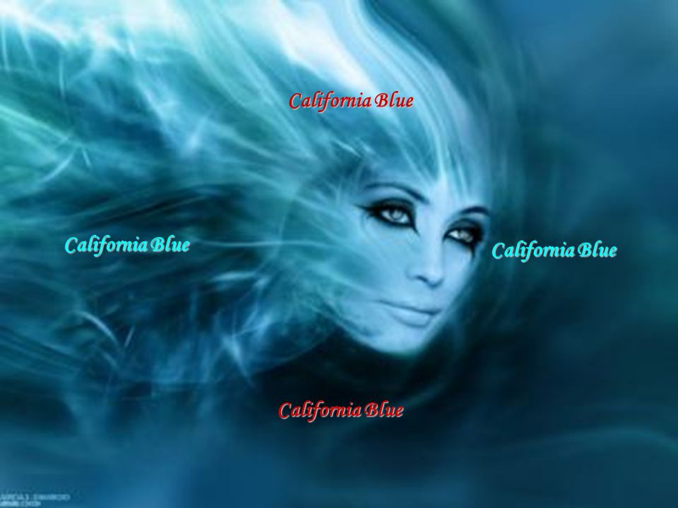 California Blue California Blue California Blue California Blue P. L. 2009