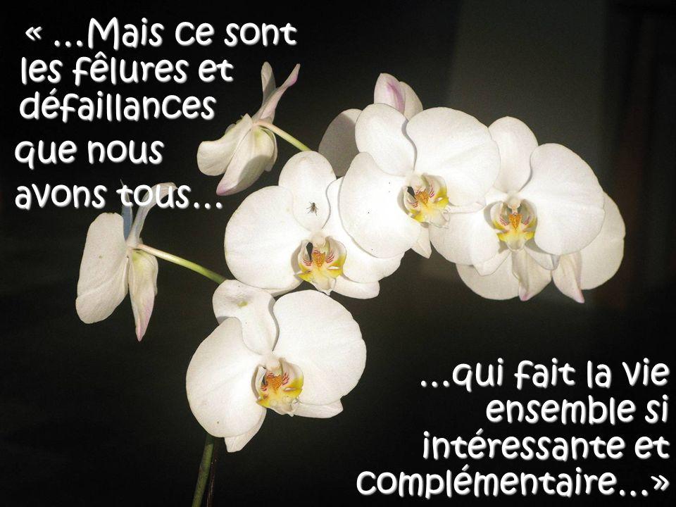« …Nous avons tous nos défaillances… »