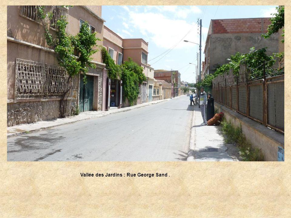Vallée des Jardins : Rue George Sand de la rue du Dr Gaillard.