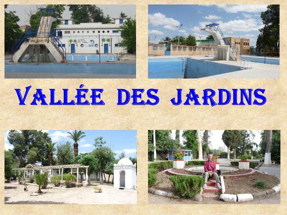 Voyage dans Notre Beau Pays : Du 19 au 26 Mai 2009. Annie & François ….. 2 ème Partie : Vallée des Jardins. Glacis Sud. Calle del Sol. Sidi-bel-abbes