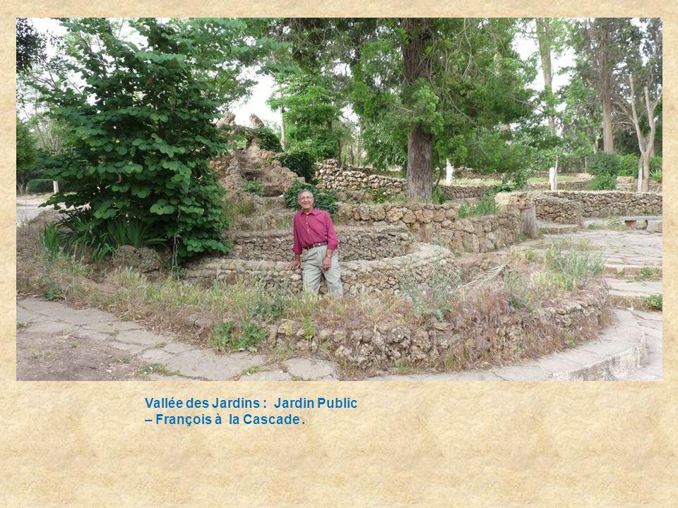 Vallée des Jardins : Jardin Public - la Cascade - Annie