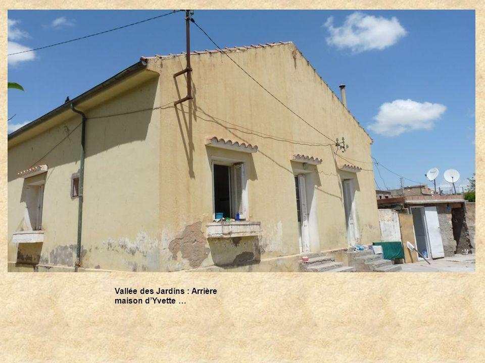Rue de la calle del Sol : Mosquée.
