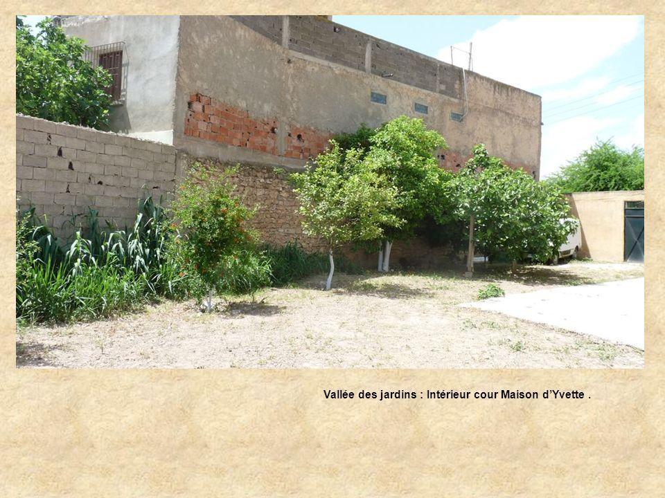 Vallée des Jardins : Arrière maison dYvette …