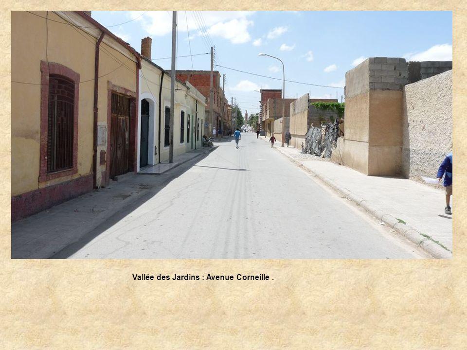Vallée des Jardins : Avenue Corneille.
