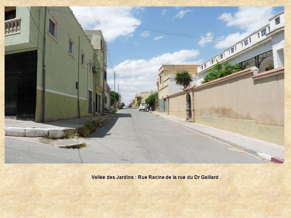 Vallée des Jardins : Rue Racine de la rue du Dr Gaillard.