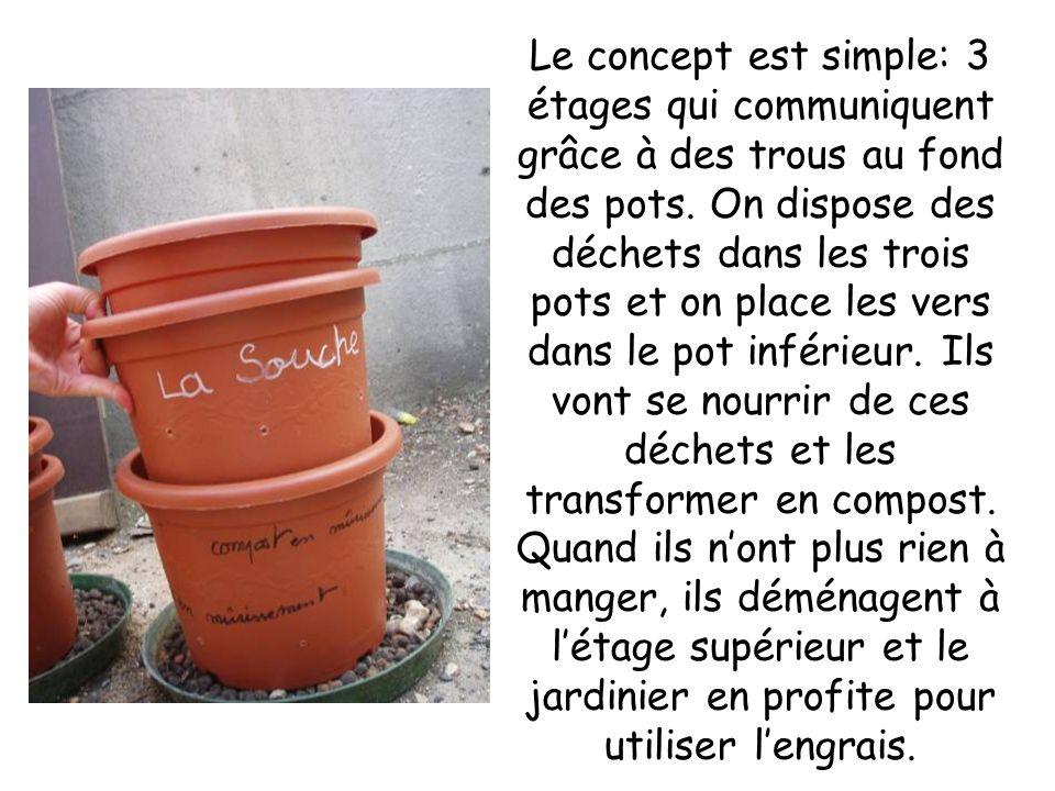Le concept est simple: 3 étages qui communiquent grâce à des trous au fond des pots. On dispose des déchets dans les trois pots et on place les vers d