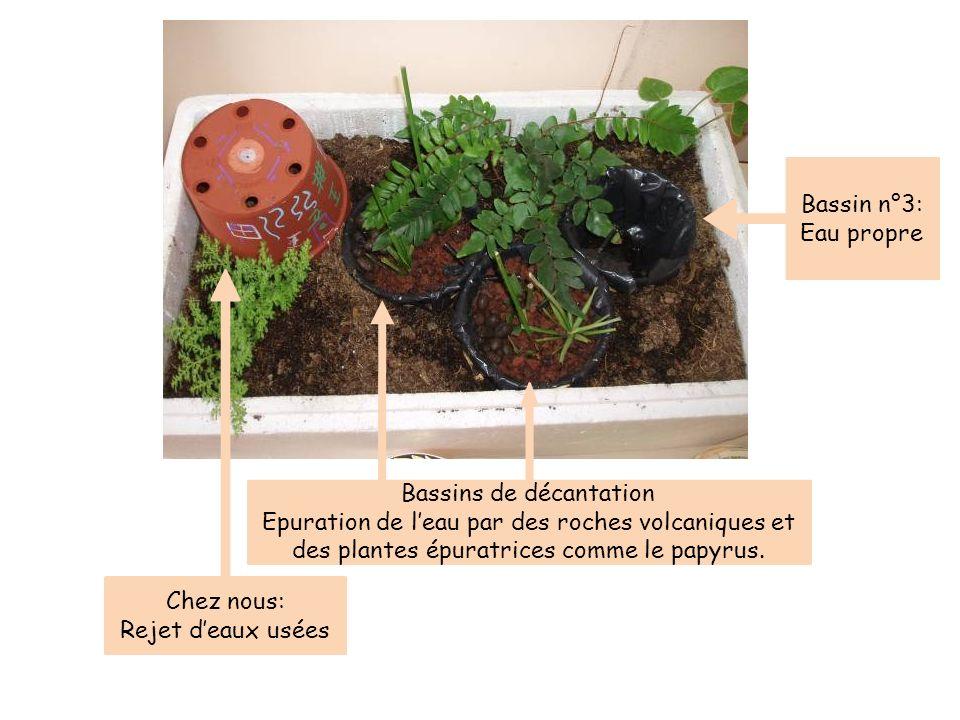 Chez nous: Rejet deaux usées Bassins de décantation Epuration de leau par des roches volcaniques et des plantes épuratrices comme le papyrus. Bassin n