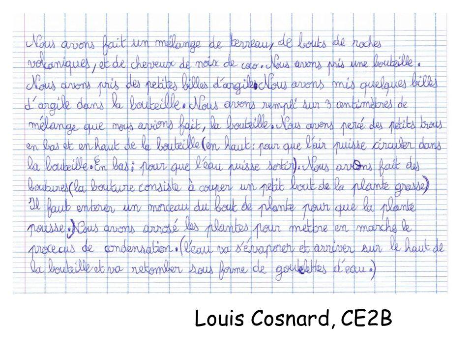 Louis Cosnard, CE2B