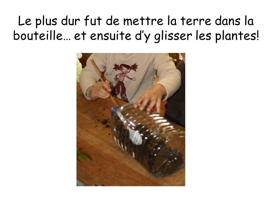 Le plus dur fut de mettre la terre dans la bouteille… et ensuite dy glisser les plantes!