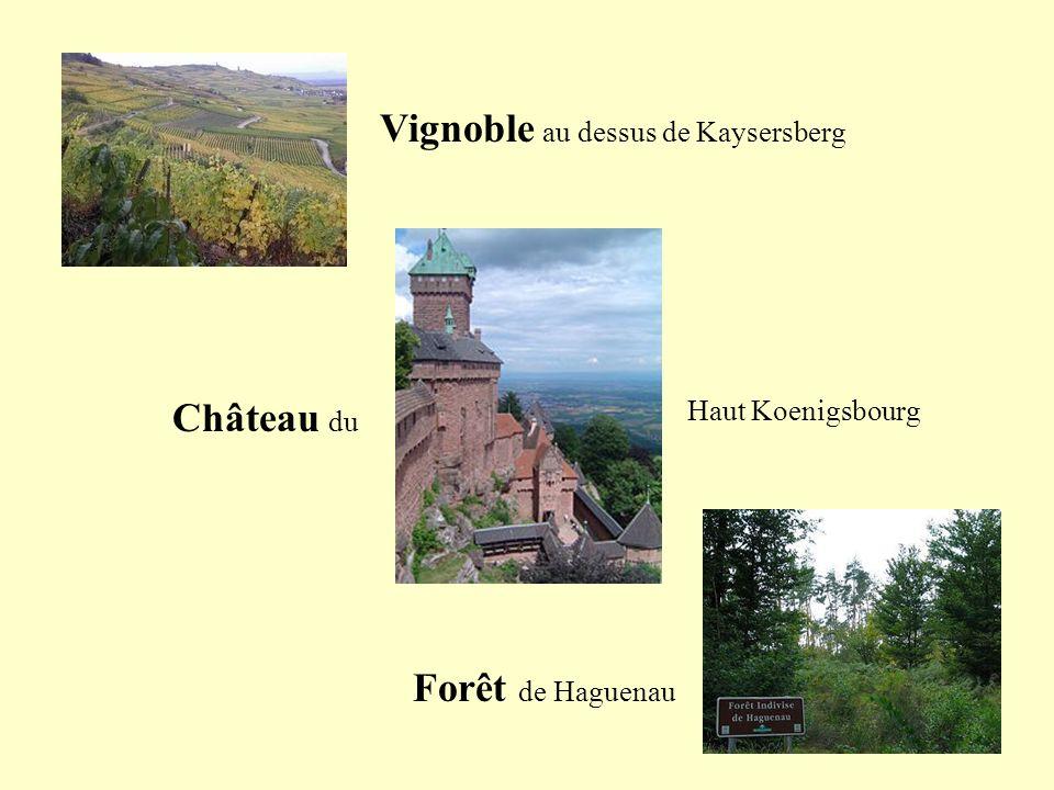 Maison des Vosges de la campagne et du Vignoble Colombage Fenêtre Images du site de lAssociation pour la Sauvegarde de la Maison Alsacienne et de lEco