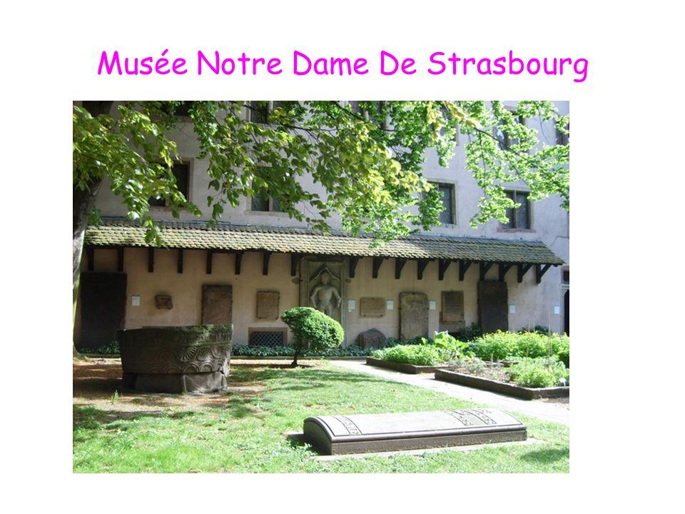 Musée Notre Dame De Strasbourg
